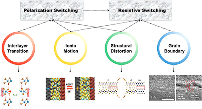A flowchart and schematic that shows the memristive mechanisms for polarization switching and resistive switching through 2D materials.