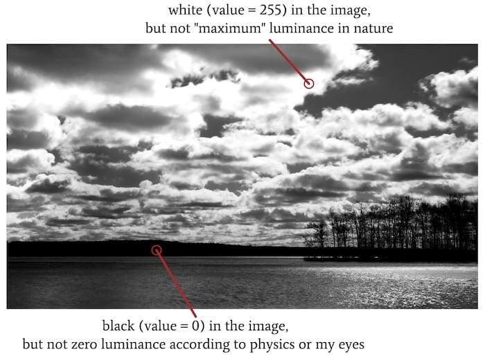 A digital monochrome image