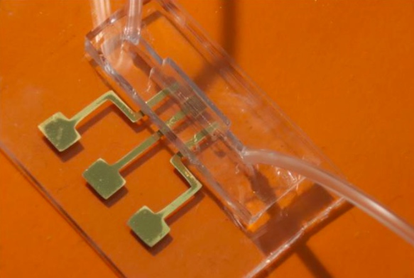 A prototype of the researchers' rapid COVID-19 antibody test powered by a microfluidic chip