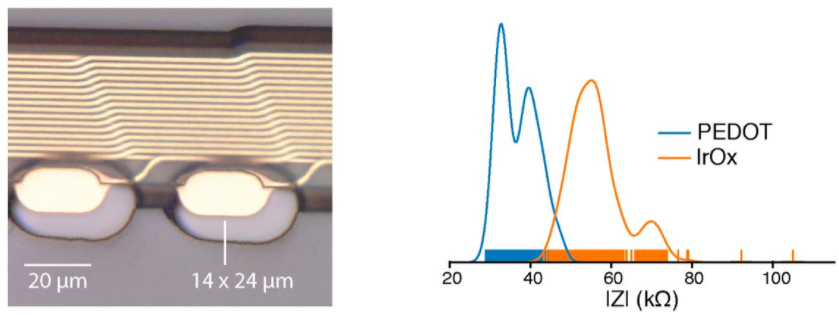 A single thread of Polyimide dielectric with gold filaments & electrodes (left) with associated impedance profiles (right)