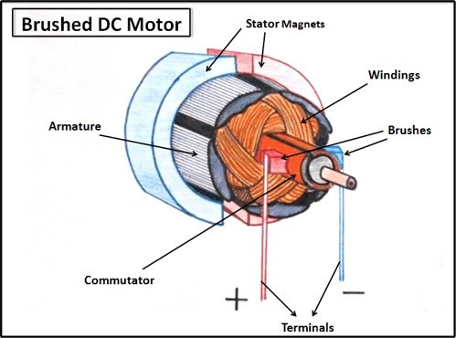 Brushed DC motors use brushes and a commutator