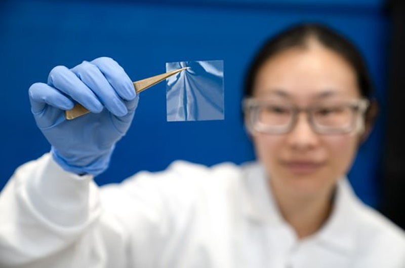 A researcher holding up a hyaline film.