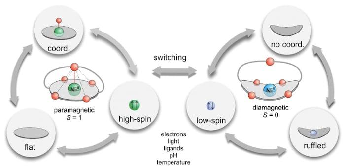 Intermolecular cooperation