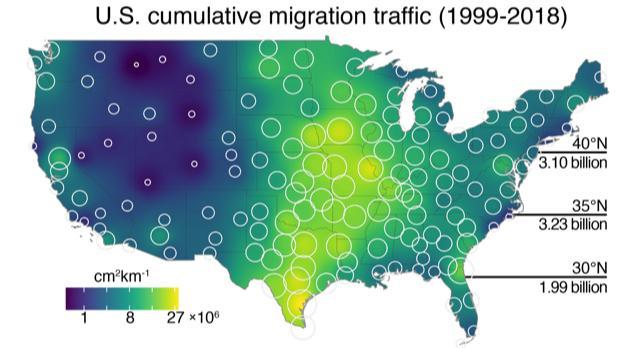 U.S. cumulative map of bird migration from 1999 to 2018