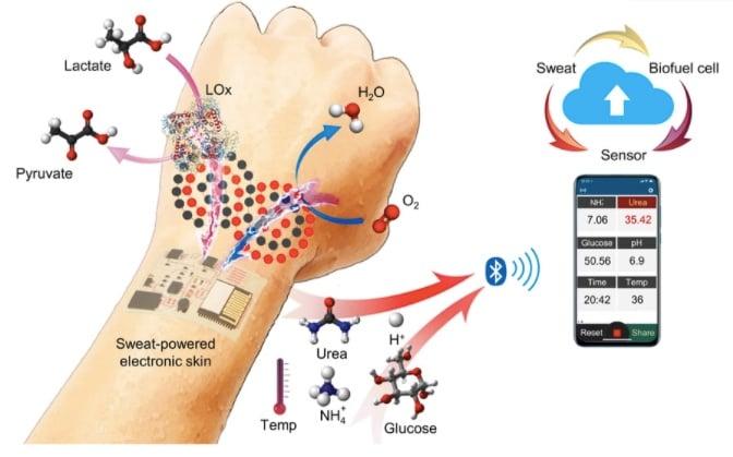 Peau électronique alimentée par la transpiration