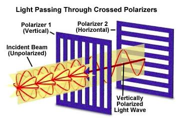 Polarization of light through crossed polarizers