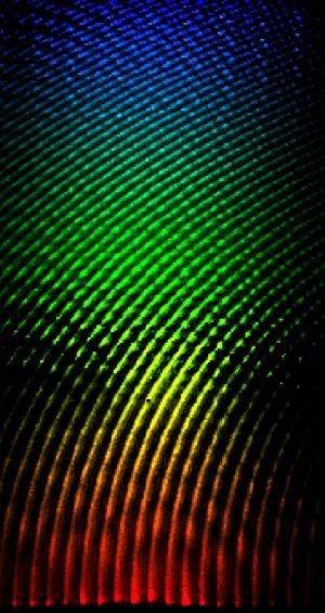 Raster scan pattern.