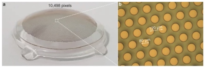 The (a) high-density prosthesis designed by researchers at EPFL, with an active working area of 13 mm in diameter, contains nearly (b) 10,500 photovoltaic pixels.