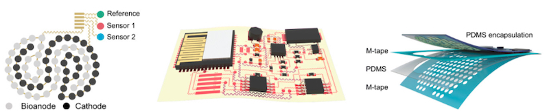 Schematic image of the stretchable BFC-biosensor patch,