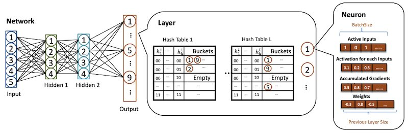 Specific neuron sampling with hashing