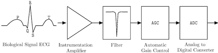 Standard processing steps for a biological signal.