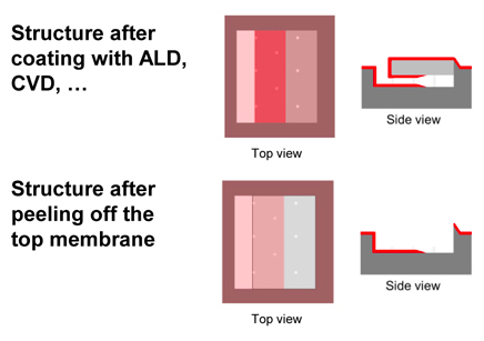 Structure post-ALD coating and after peeling off the membrane