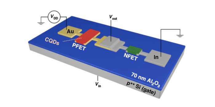 Two types of quantum dot transistors on the same substrate
