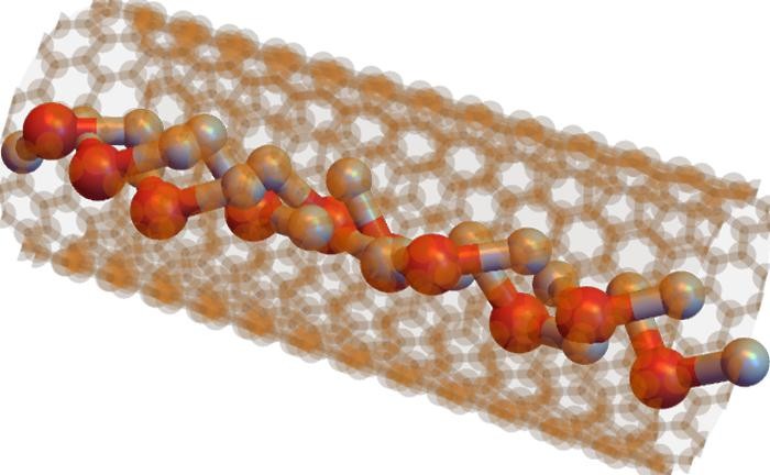 H20 molecules inside a [9,9] nanotube