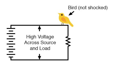 high voltage power without bird getting shocked
