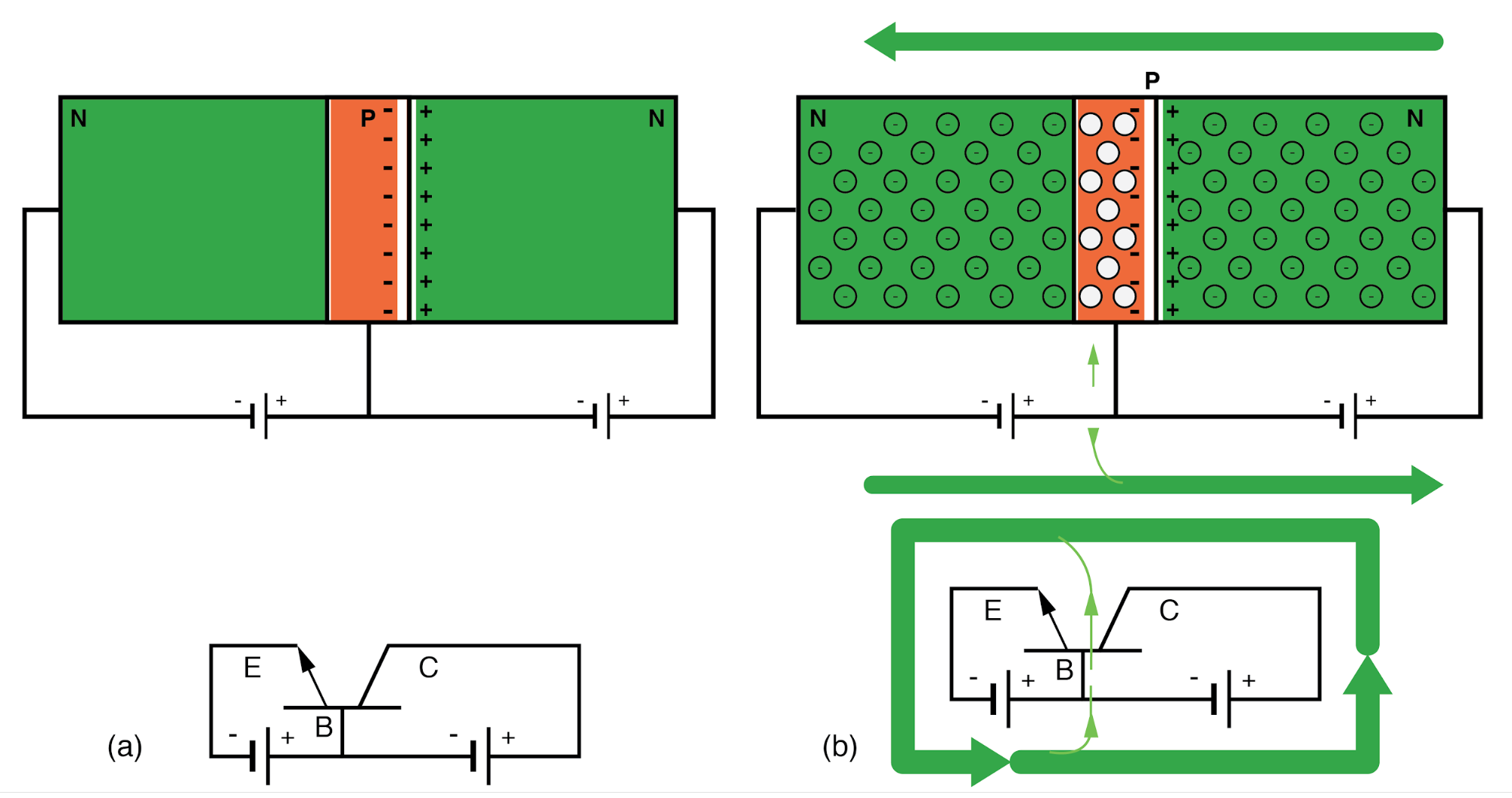 NPN junction bipolar transistor with reverse biased collector-base: (a) Adding forward bias to base-emitter junction, results in (b) a small base current and large emitter and collector currents.