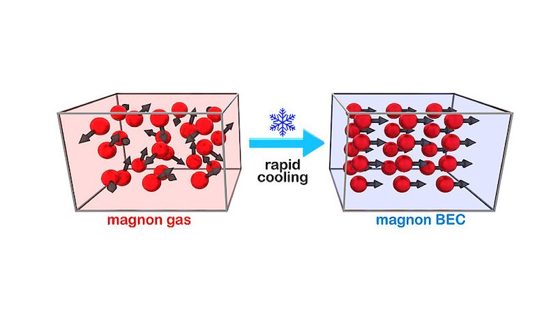 A diagram of the rapid cooling process from magnon gas to magnon BEC.
