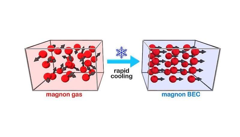 Un diagramme du processus de refroidissement rapide du magnon gaz au magnon BEC.