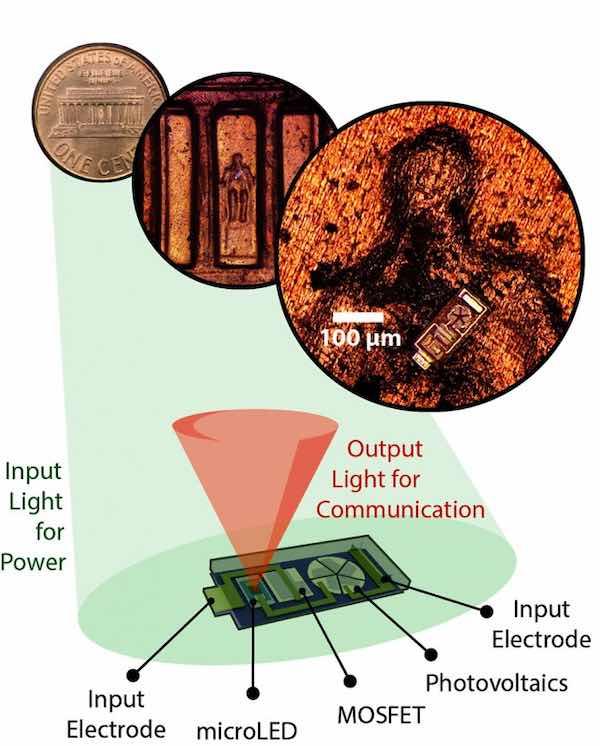 A voltage-sensing OWIC.