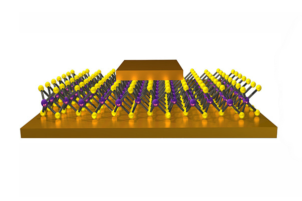 Nonvolatile Resistance Switching in Atom Thin Memristors